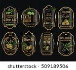 olive oil retro vintage... | Shutterstock .eps vector #509189506