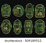 olive oil retro vintage... | Shutterstock .eps vector #509189512