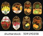 set of organic fruit retro... | Shutterstock .eps vector #509190358