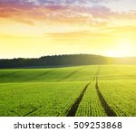 autumn landscape with green... | Shutterstock . vector #509253868