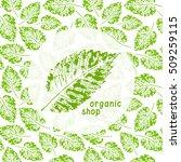 organic shop illustration for... | Shutterstock .eps vector #509259115