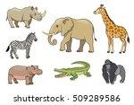 African Animals In Cartoon...