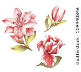 Set With Blooming Lilies. Hand...