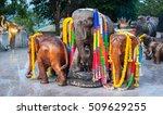 Small photo of Wooden elephants, Nay Harn, Phuket, Thailand