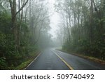 Mist Tree Road/Forest trail surrounded by mist resulting from heavy rain. - stock photo
