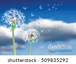 vector dandelion with flying... | Shutterstock .eps vector #509835292