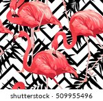 flamingo bird and tropical... | Shutterstock .eps vector #509955496