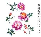 watercolor hand painted... | Shutterstock . vector #510050452