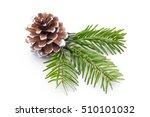 fir tree branch and cones... | Shutterstock . vector #510101032