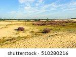 Dutch National Park Loonse En...