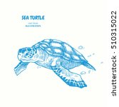 Sea Turtle. Hand Drawn Vector...