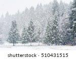 Snow Falling Heavily In An...
