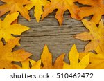 Small photo of Yellow bigleaf maple (Acer macrophyllum) leaf border with copyspace