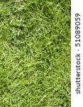 green grass texture background | Shutterstock . vector #51089059