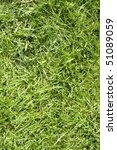 green grass texture background | Shutterstock . vector #51089059