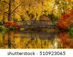 Gorgeous Fall Scene Of...