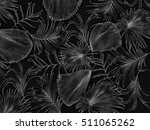 leaves of palm tree background | Shutterstock . vector #511065262