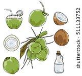 vector coconut hand drawn... | Shutterstock .eps vector #511133752
