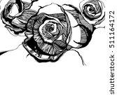 vector multicolor rose flowers. ... | Shutterstock .eps vector #511164172