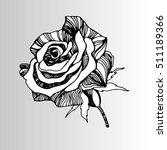 vector multicolor rose flowers. ... | Shutterstock .eps vector #511189366