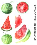 Watercolor Set Watermelon. The...