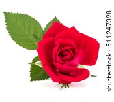 Stock photo red rose flower head isolated on white background cutout 511247398