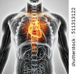 3d illustration of heart   part ... | Shutterstock . vector #511313122