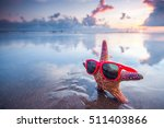 Starfish In Sunglasses On Sea...