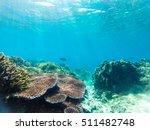 underwater sunbeams through the ... | Shutterstock . vector #511482748