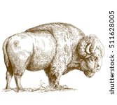 antique engraving illustration... | Shutterstock . vector #511628005