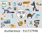 Pets Flat Illustration Concept. ...