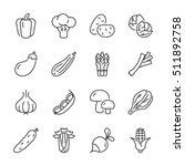 basic vegetables thin line icon ... | Shutterstock .eps vector #511892758