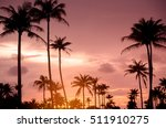 copy space of tropical palm... | Shutterstock . vector #511910275