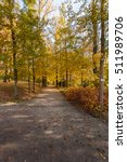Autumnal Park Sunlight Oasis O...