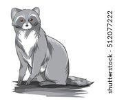 raccoon vector | Shutterstock .eps vector #512077222