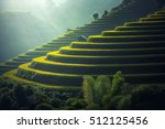 Vietnam Rice Fields On Terrace...
