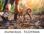 Stock photo man hiking in autumn colorful forest with dog 512245666