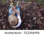 Boy Swinging On A Rope In...