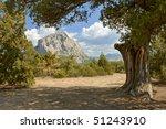 falcon mountain over new world... | Shutterstock . vector #51243910