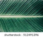 Details Of Big Green Leaf ...