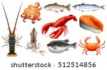 different types of seafood | Shutterstock .eps vector #512514856