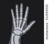 X Rays Style Human Hand. Vector