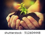 hand and plant | Shutterstock . vector #512604448