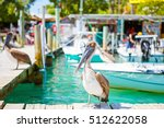 big brown pelicans in port of... | Shutterstock . vector #512622058