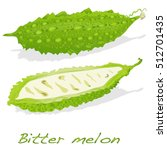 bitter melon vector isolated on ... | Shutterstock .eps vector #512701435