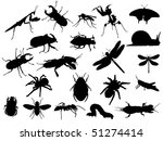 insect | Shutterstock .eps vector #51274414