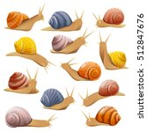 Set Of Isolated Drawn Snails O...