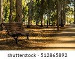 Wooden Bench In Eucalyptus Park.