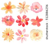 Stock photo floral set collection with flowers drawing watercolor 512886256