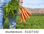 Close Up Of A Carrot Farmer...